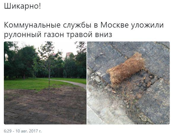 КНДР продолжает нагнетать, украинский вертолет «Надежда», игиловец с паспортом РФ. Дайджест 10 августа