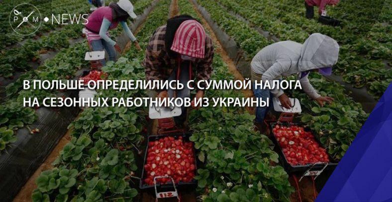 Польша вводит налог для работников из государства Украины