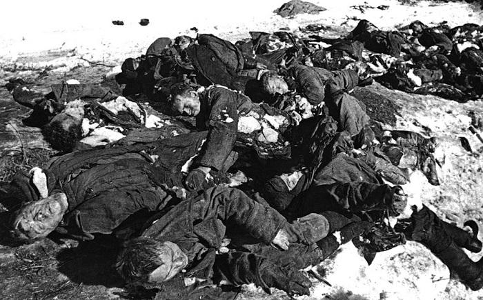 Картинки по запросу Военные потери ВОВ