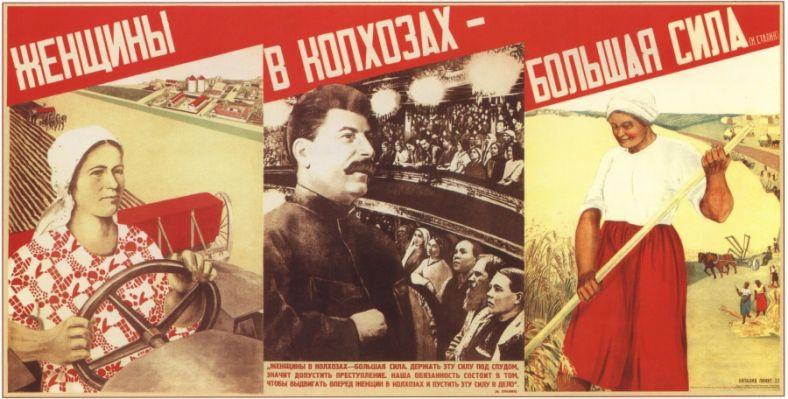 pinus-1933