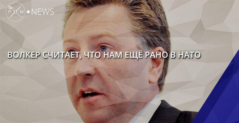 Русскоязычные вУкраинском государстве страдают только натерритории, подконтрольной РФ,— Волкер