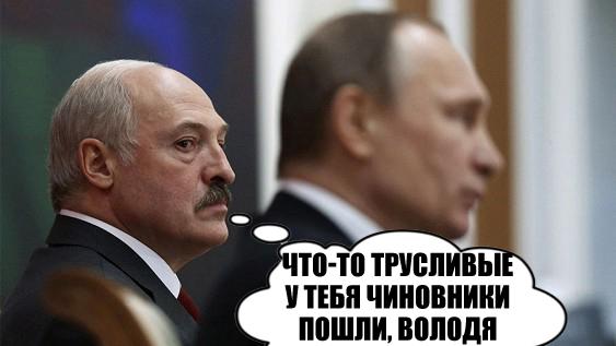 Россельхознадзор ввел новые требования кпродукции из Беларуси из-за АЧС