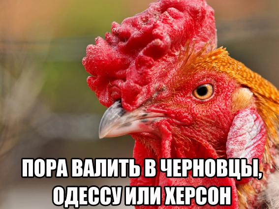 ЕСснял ограничения напоставку украинского мяса птицы