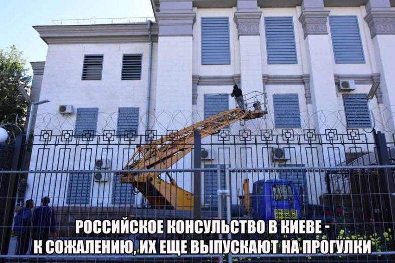 Названа фамилия русского дипломата, который «вышивал» поКиеву «под шафе»