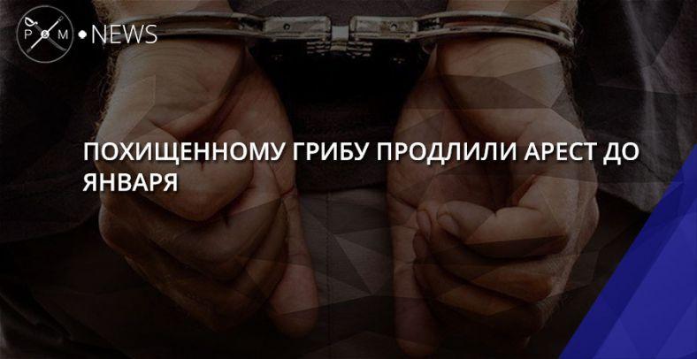 СМИ поведали , вчем именно обвиняется девятнадцатилетний  украинец Павел Гриб