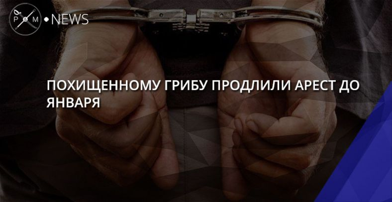 Суд в РФ  продлил арест Павла Гриба до4января